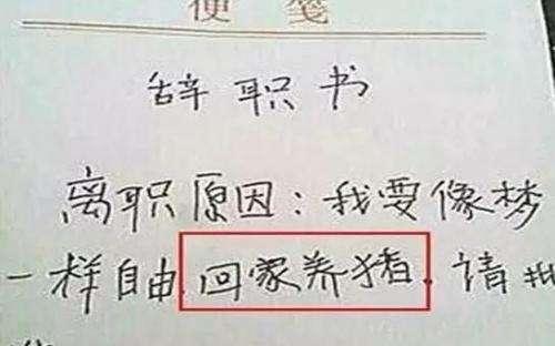 标准的辞职信模板写法